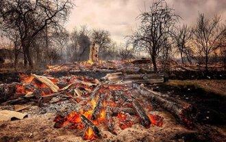 Пожары на Житомирщине: Причиной могут быть НЕ поджигатели - фото 1