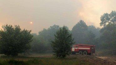 Пожары в Чернобыльской зоне и Житомирской области почти потушены - фото 1