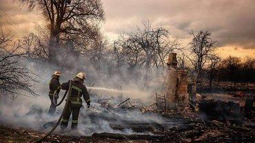 Новый пожар в Житомирской области пытаются локализовать - фото 1