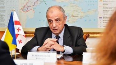 Посол Грузии в Украине улетит в Тбилиси - фото 1
