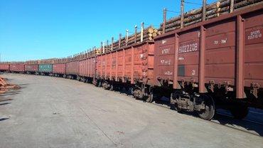 ИКЕА закупает незаконно срубленную в Карпатах древесину - фото 1
