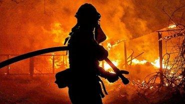 На Луганщине бушуют лесные пожары, идет срочная эвакуация – ФОТО - фото 1