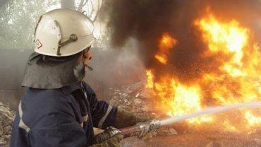 Пожары на Луганщине уничтожили десятки домов, несколько человек погибло – ФОТО - фото 1