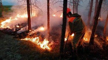 Масштабные пожары на Луганщине: Пламя скосило первую жертву - фото 1