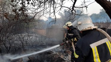Спасатели ликвидировали масштабные пожары на Луганщине - фото 1