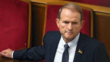 Медведчук потратил 20 миллионов евро на землю в Болгарии - фото 1