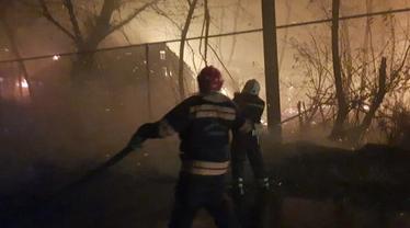 Луганская область в огне: российские террористы подожгли тысячи гектаров полей и лесов - фото 1
