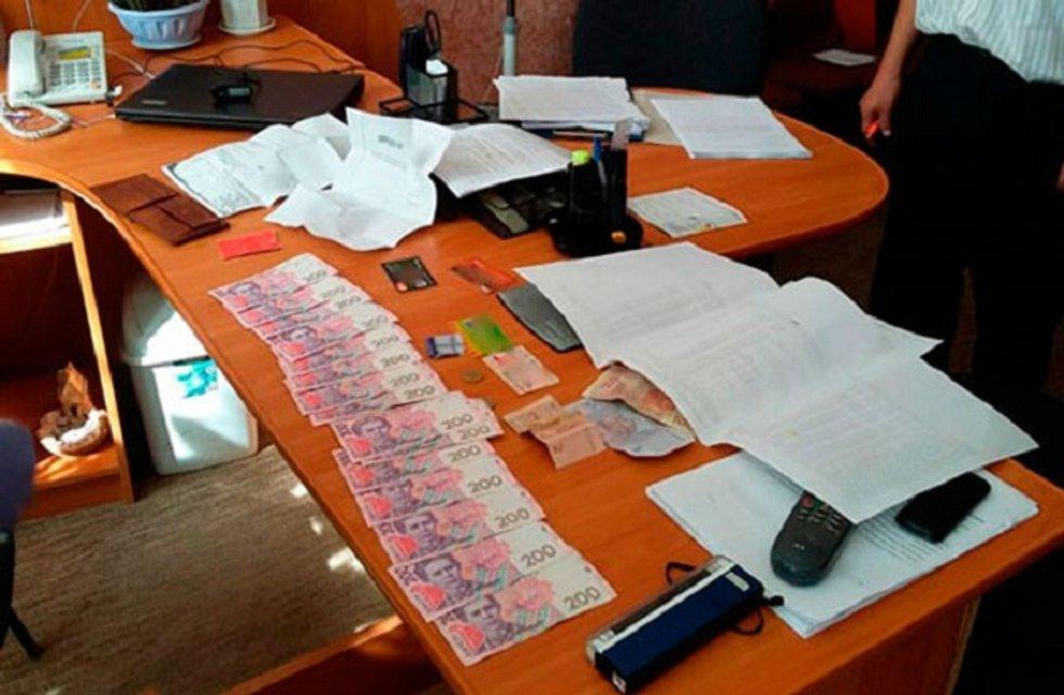 Руководителя райуправления защиты в Закарпатской области поймали на коррупции - фото 10516