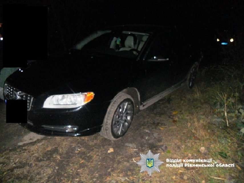 В Ровненской области изъяли более 33 кг нелегального янтаря - фото 16532