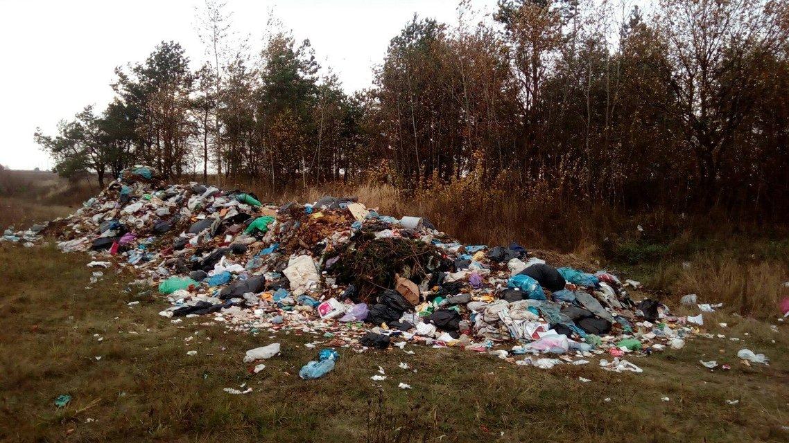 Возле трассы в Житомирской области выгрузили тонны мусора из Львова - фото 18830
