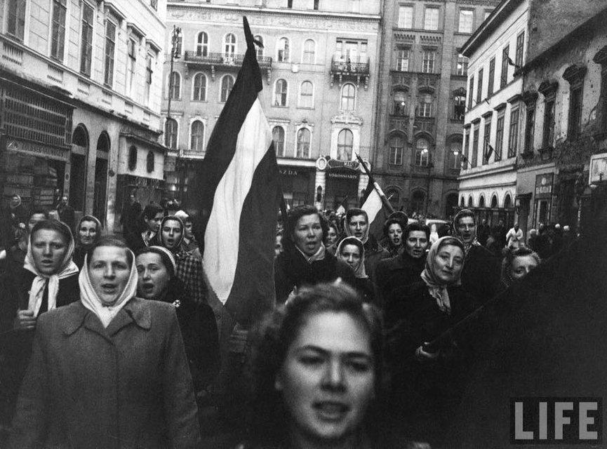 Угорська репетиція. Як вплинуло на європейську історію повстання 1956 року - фото 18524