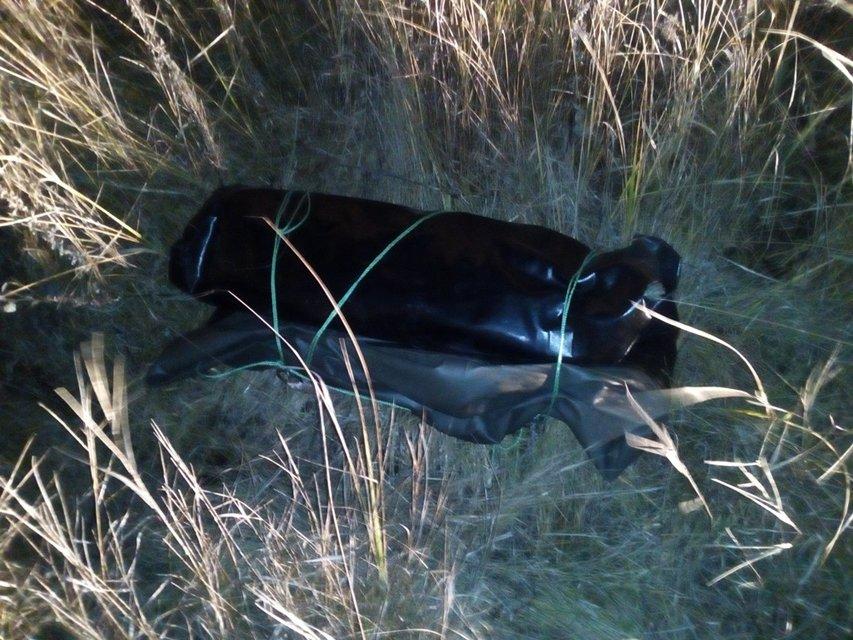 В Волынской области пограничники со стрельбой задержали 7 контрабандистов - фото 22548