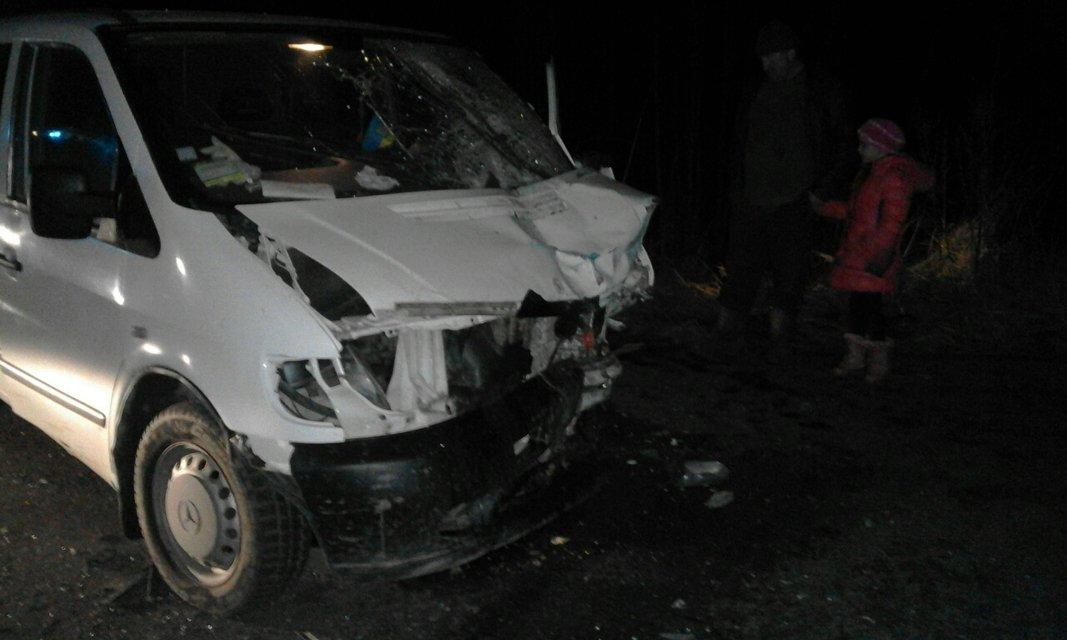 Смертельное ДТП в Житомирской области - микроавтобус столкнулся с легковушкой - фото 23666