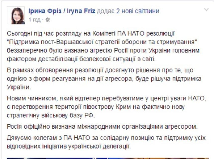 Парламентская Ассамблея НАТО официально признала Россию агрессором - фото 22581