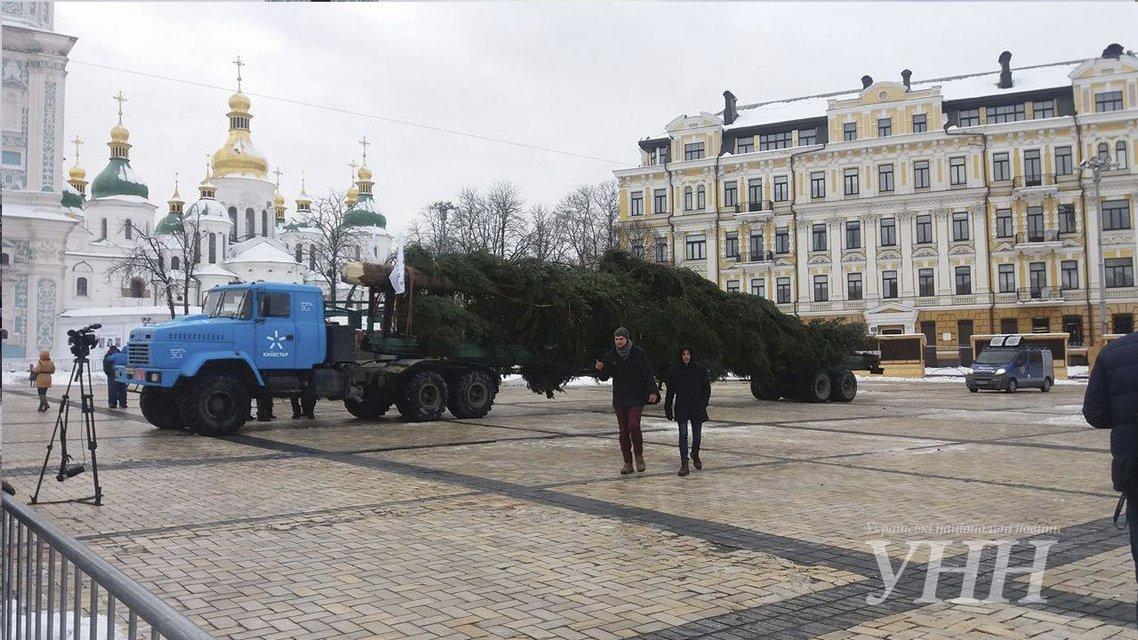 На Софиевскую площадь Киева привезли главную ёлку Украины - фото 24707