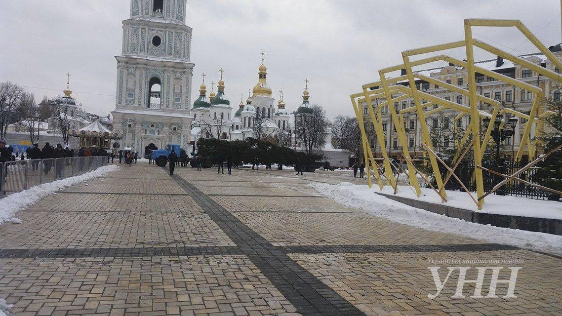 На Софиевскую площадь Киева привезли главную ёлку Украины - фото 24706