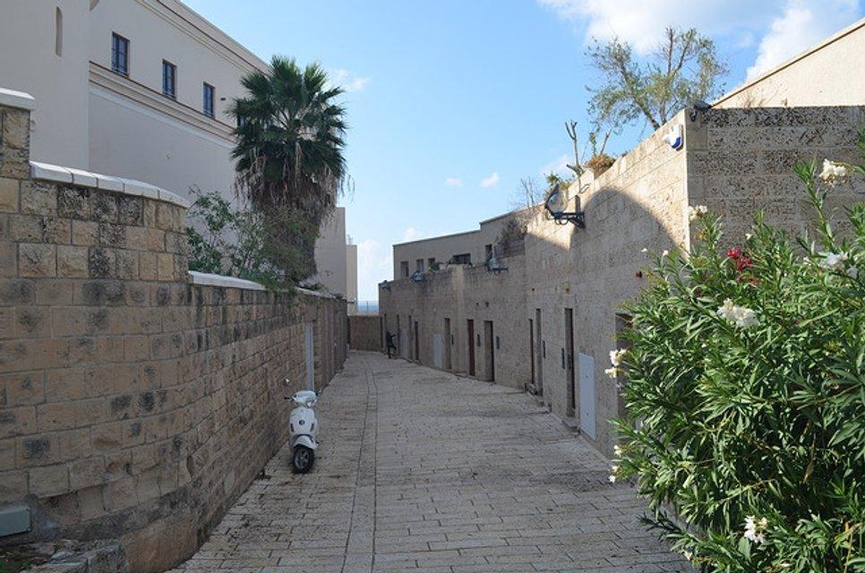 Пагорб весни. Мандрівка до Тель-Авіву - фото 28999