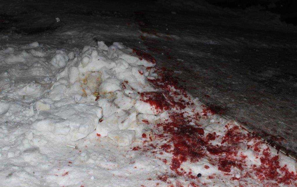 Неизвестные с винтовками и автоматами расстреляли молодых людей в Житомирской области - фото 30248