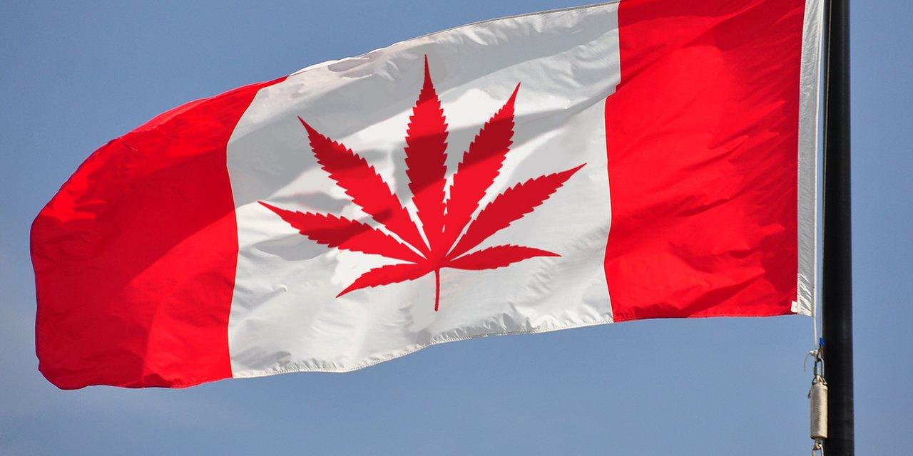 Далека близька країна. Що ми знаємо про Канаду - фото 35508