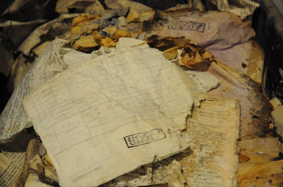 Сотрудники СБУ случайно нашли тайник с документами ОУН - фото 34228
