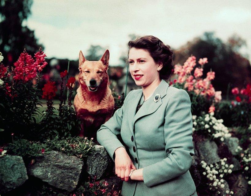Эпоха Елизаветы. Королева Великобритании отмечает 65 лет правления на троне - ФОТО - фото 33288