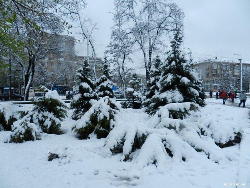 Днепр в снегу - фото 43138