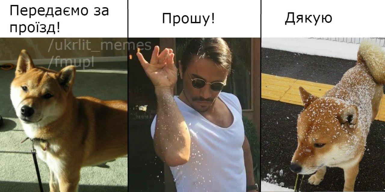 Соль за проезд. Соцсети порвало от нового фейка на РосТВ - фото 48267