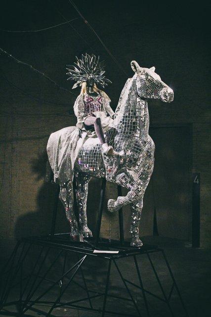 Маленькая копия сценического коня Поляковой - фото 53229