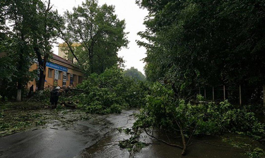 Ураган в Хмельницкой области оставил без света 35 населенных пунктов - фото 54263