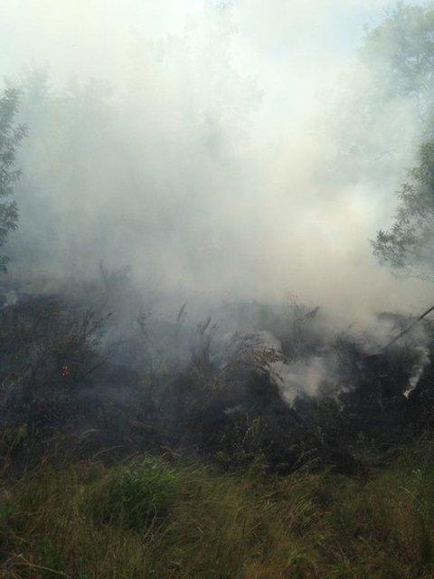 Неизвестные пытались поджечь Запорожскую Сечь - фото 50448