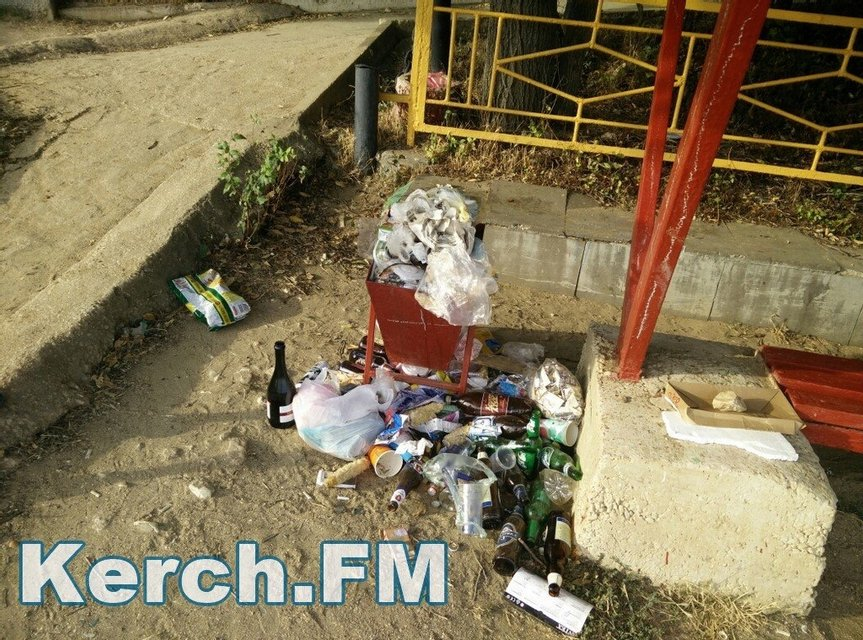 Оккупанты превратили пляжи Крыма в свалку - фото 58819