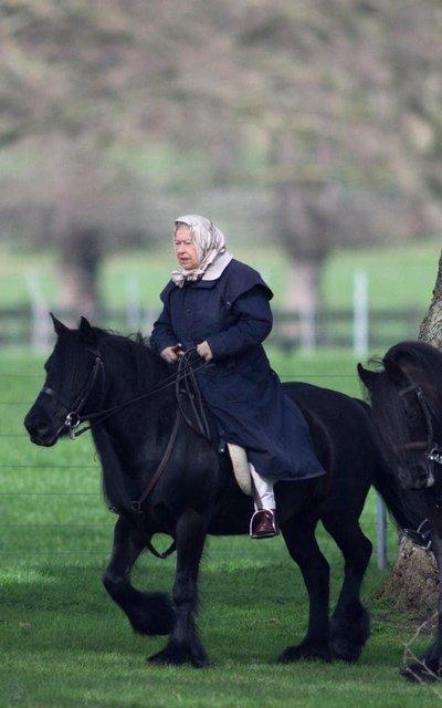 Королева Великобритании на верховой прогулке - фото 58421
