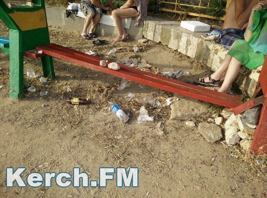 Оккупанты превратили пляжи Крыма в свалку - фото 58808