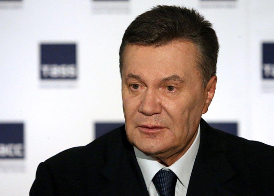 Янукович-2017 - фото 56179