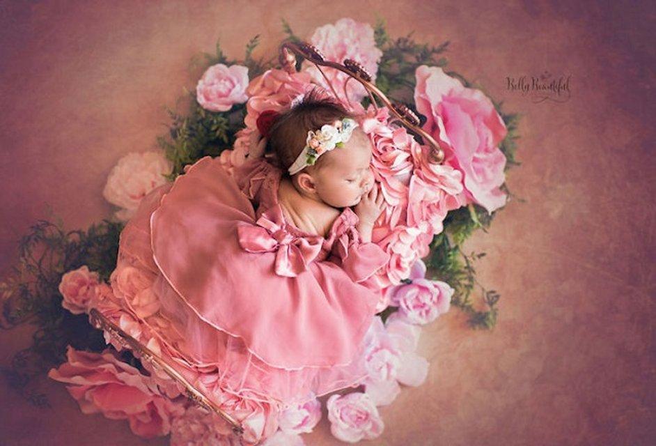 Аврора, «Спящая красавица»: фото - фото 61779