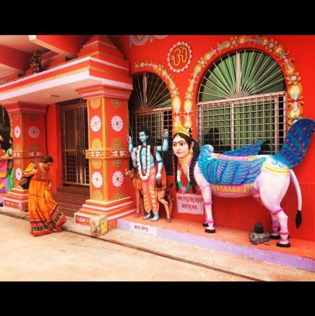 Могилевская в Индии - фото 57084
