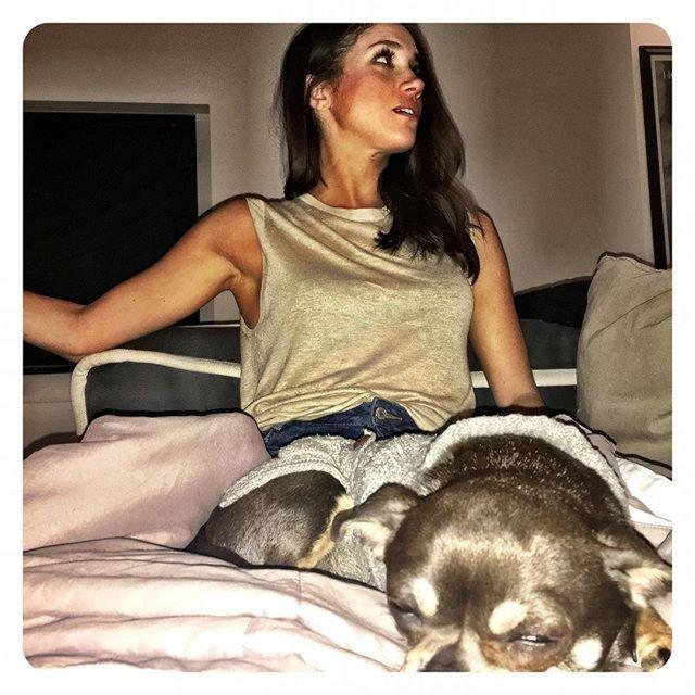 Актриса с собаками - фото 58962