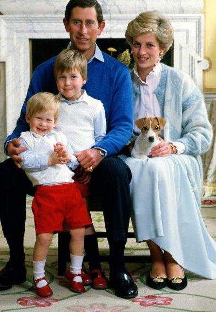 Принцесса Диана и принц Чарльз: фото с детьми - фото 62054