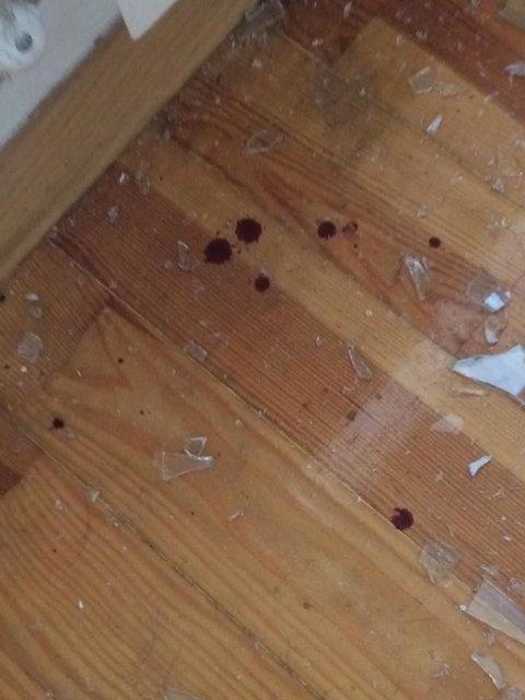В дом продюсера Мозговой проникли через окно, запачкав пол кровью (фото) - фото 66195