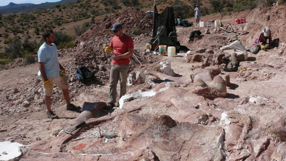 В Аргентине обнаружили самого большого в истории динозавра - фото 64929