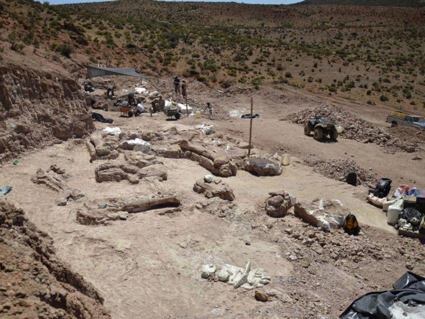 В Аргентине обнаружили самого большого в истории динозавра - фото 64930