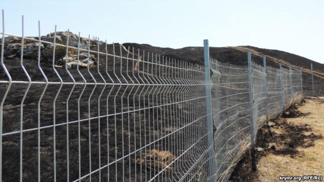 Выжженная земля ограничивается территорией заповедника за забором - фото 65935