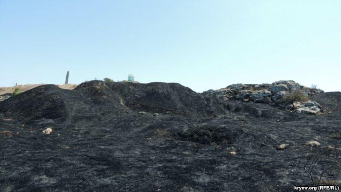 Выжженная земля ограничивается территорией заповедника за забором - фото 65937