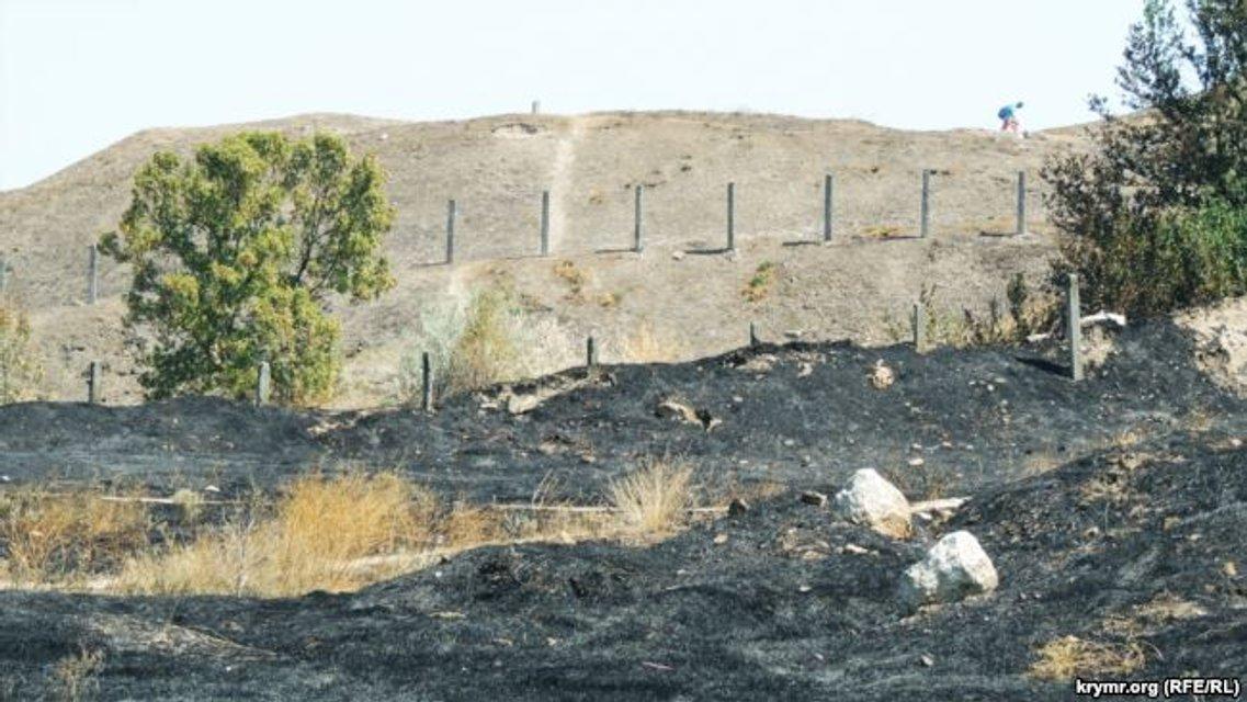 Выжженная земля ограничивается территорией заповедника за забором - фото 65938