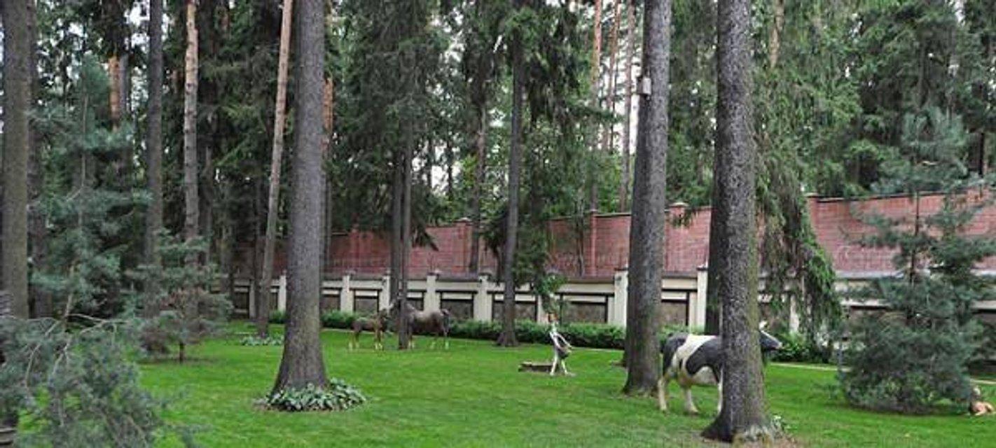 Янукович за стеной - фото 69585