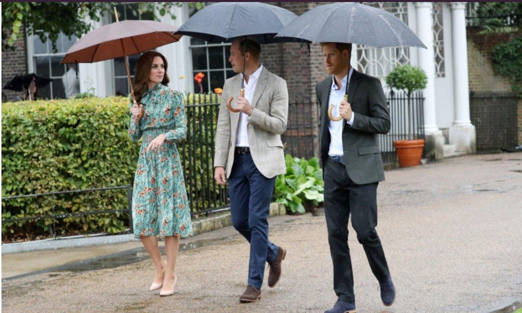 В платье Prada Кейт Миддлтон и принцы Уильям и Гарри посетили Белый сад в память о Диане - фото 70384