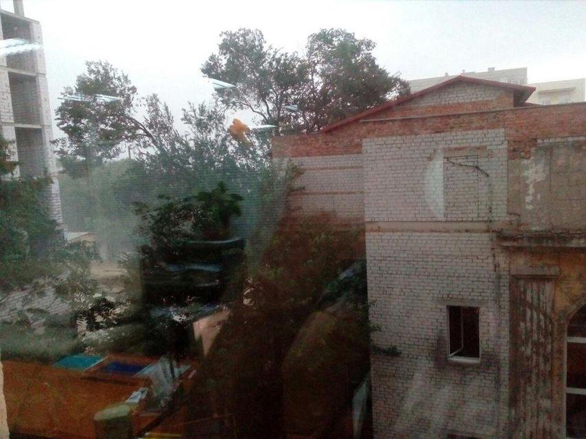 Днепр накрыла мощная буря: поваленные деревья и реки на улицах - фото 68828