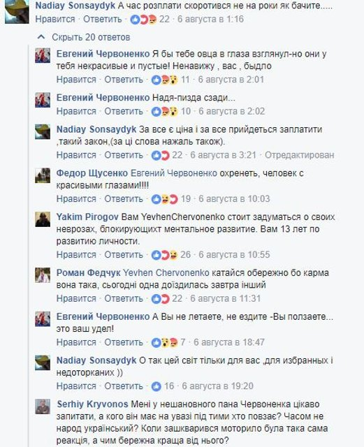 Экс-министр скатился до матерных оскорблений из-за гибели Ирины Бережной - фото 64731