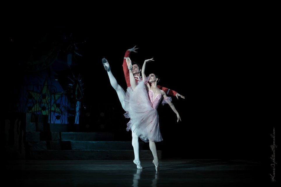 Александр Стоянов и Екатерина Кухар выступили инициатора благотворительного концерта - фото 75854