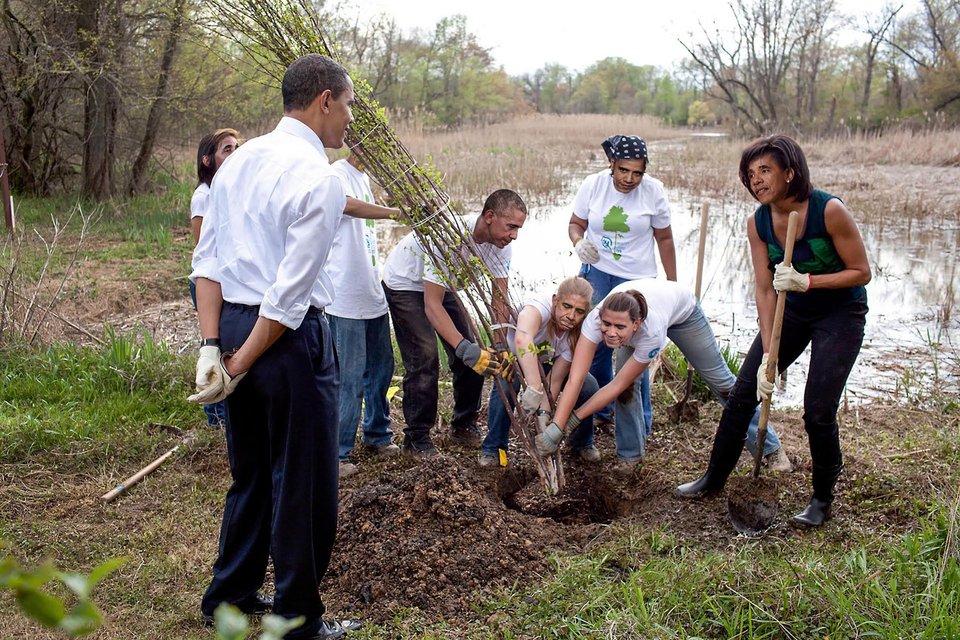 Бараки Обамы буквально сажают дерево - фото 75004